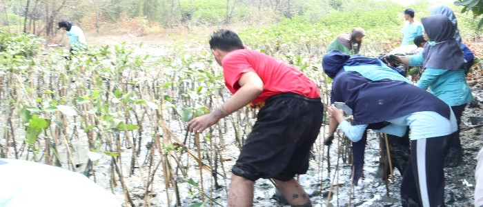 Ecolify.org Projek Lokasi Pesisir Tambakrejo Kelurahan Tanjungmas Kecamatan Semarang Utara