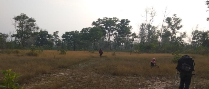 Ecolify.org Projek Lokasi Kawasan Suaka Margasatwa Balai Raja, Bengkalis