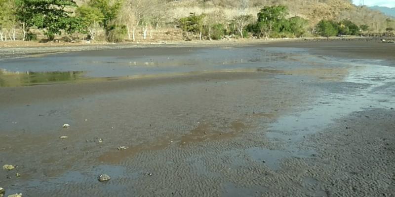 Ecolify.org Projek Lokasi Pesisir Desa Nangatumpu, Dompu NTB