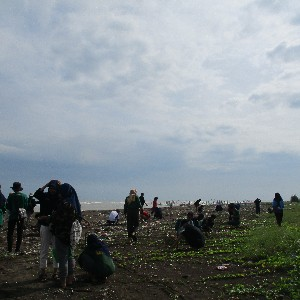 Ecolify.org Project Location penanaman 700 pohon cemara laut bersama dengan komunitas pecinta alam kendal