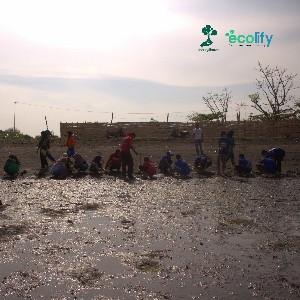 Ecolify.org Project Location penanaman dilakukan di pantai berigheen yang terletan di desa peleyan, penarukan, situbondo, jawa timur