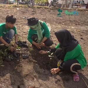 peserta penanaman yang ada di pantai berigheen situbondo dilakukan oleh anak-anak muda yang peduli dengan alam