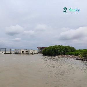 Dampak abrasi yang terjadi di Tambakrejo, Semarang, cukup parah apabila dilihat dari keadaannya sekarang ini. wilayah yang dulunya merupakan Tempat Pelelangan Ikan kini hanya menjadi puing-puing belaka